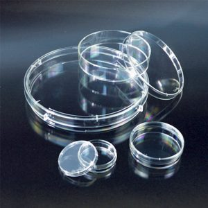 Đĩa nuôi cấy mô chưa được xử lý, vô trùng, PS,  Ø 100 x 20 mm, 10 cái/ gói – Mã: 4100