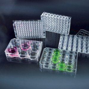 Đĩa nuôi cấy mô 12 giếng, đã được xử lý, vô trùng – Mã: 17012